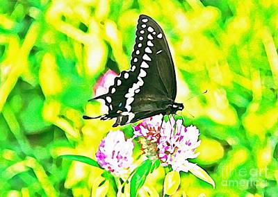 Photograph - Black Swallowtail Feeding by Joan McArthur