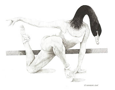Wall Art - Drawing - Black Swan by Paul Shafranski