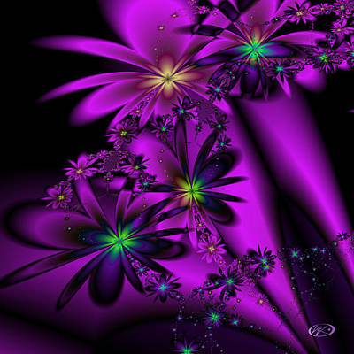 Digital Art - Black Violets by Kiki Art