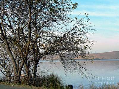 Photograph - Black Walnut Trees On The Levee by Afroditi Katsikis