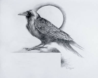 Blackbird Drawing - Black Watch by Derrick Higgins
