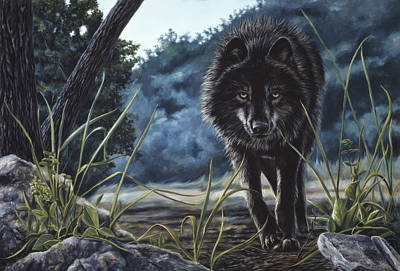 Wolf Wall Art - Painting - Black Wolf Hunting by Lucie Bilodeau