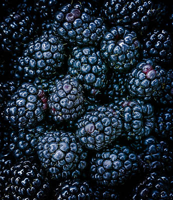 Blackberries Art Print by Karen Wiles