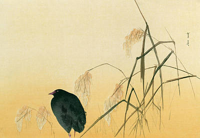 Japanese Silk Painting - Blackbird by Japanese School