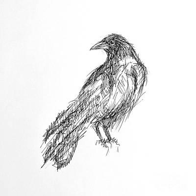 Print featuring the drawing Blackbird  by Nicole Gaitan
