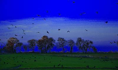 Blackbird Singing... Art Print