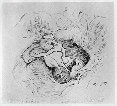 Cuckoo Drawing - Blackburn Birds, 1871 by Granger