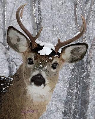 Blacktail Buck In Snow Art Print