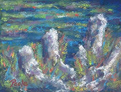 Blackwater Cypress Knees Art Print