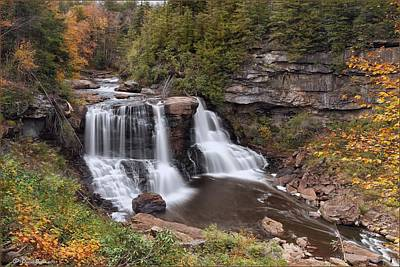 Photograph - Blackwater Falls by Daniel Behm