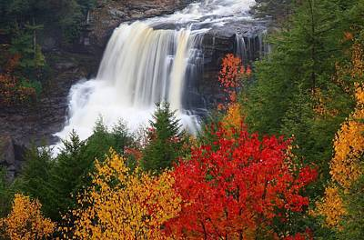 Blackwater Falls In Autumn Print by Jetson Nguyen