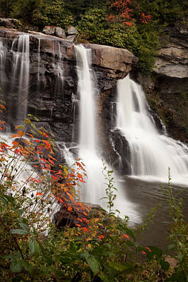 Photograph - Blackwater Falls by Robert Camp