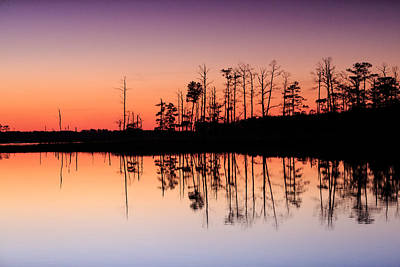 Photograph - Blackwater Reflections by Jennifer Casey