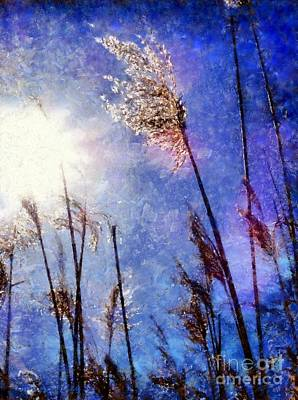Photograph - Blades Of Glory Marsh Grass by Janine Riley
