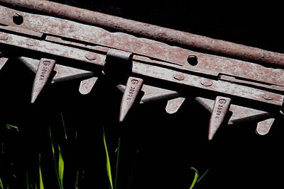 Photograph - Blades Of Steel And Grass by Trent Mallett