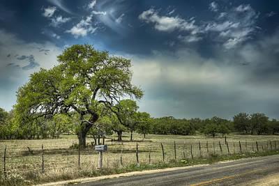 Mail Box Photograph - Blanco Tree by Wayne Kondoff