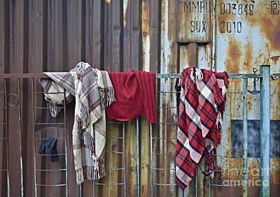 Photograph - Blankets by Steven Liveoak