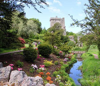 Blarney Castle Photograph - Blarney Castle 7801 by Jack Schultz