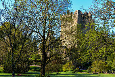 Photograph - Blarney Castle And Grounds by Marilyn Burton