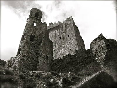 Photograph - Blarney by Kim Pippinger