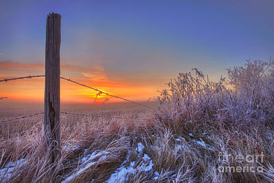 Barbed Wire Fences Photograph - Blazing Autumn Morning by Dan Jurak