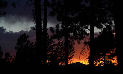 Blazing Black Hills Sunset Art Print by Dakota Light Photography By Dakota