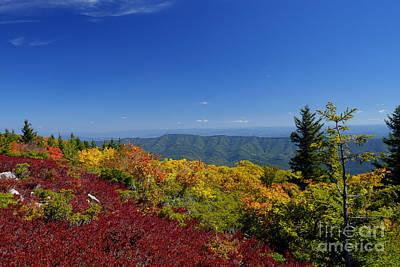 Photograph - Blazing Color Of Roaring Plains by Dan Friend
