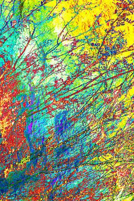 Nature Study Digital Art - Blazing Life I by Steve  Ferguson