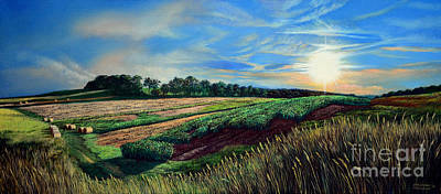 Cloudy Day Painting - Blazing Sun On Farmland by Christopher Shellhammer