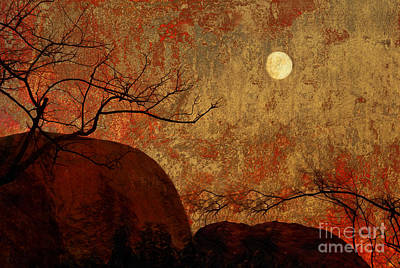Digital Art - Blazing Sunset   by Sherry  Curry