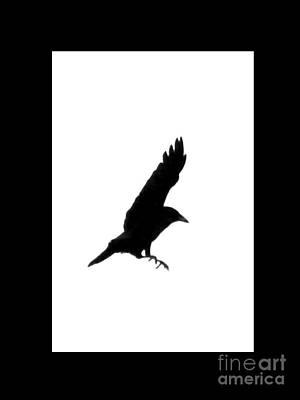 Full-length Portrait Digital Art - Black Crow by Linsey Williams