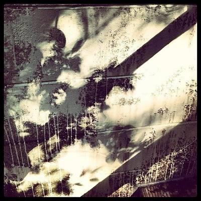Shadow Photograph - #bleach #shadows by Mandy Shupp