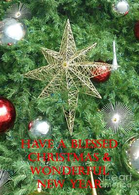 Photograph - Blessed Christmas Card by Barbie Corbett-Newmin