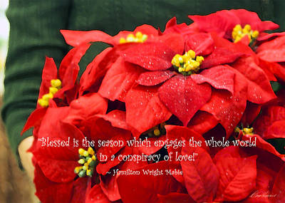Photograph - Blessed Is The Season by Diana Haronis