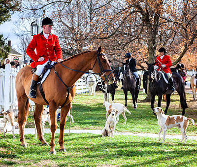 Foxhound Photograph - Blessing Of The Hounds by Alexey Stiop