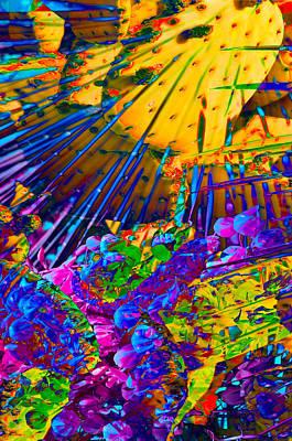 Nature Study Digital Art - Blessing by Steve  Ferguson