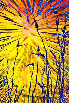 Blessing Vii Art Print by Steve  Ferguson