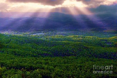 Photograph - Blessings From Above by Judi Bagwell