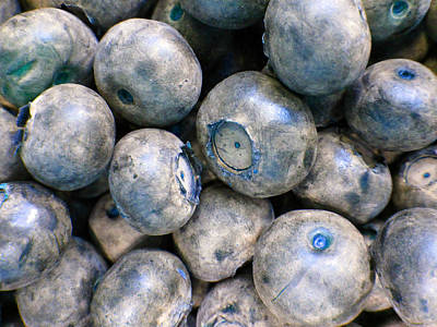 Photograph - Blueberries G by Laurie Tsemak
