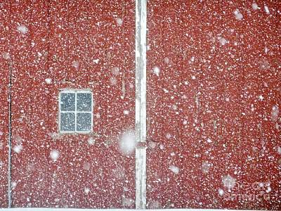 Photograph - Blizzard Barn by Tim Good
