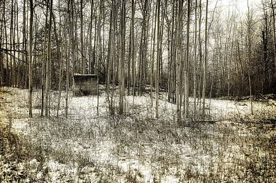 Photograph - Blockhouse by Alan Norsworthy