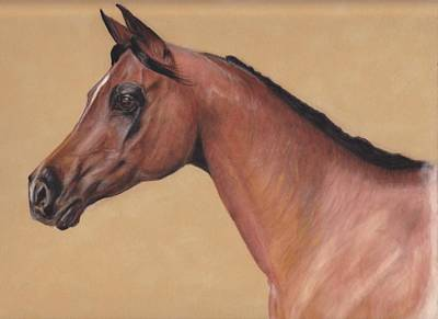 Blood Arabian Queen Art Print by Loreen Pantaleone