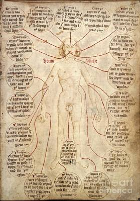 Blood-letting Instructions, 15th Century Art Print by British Library