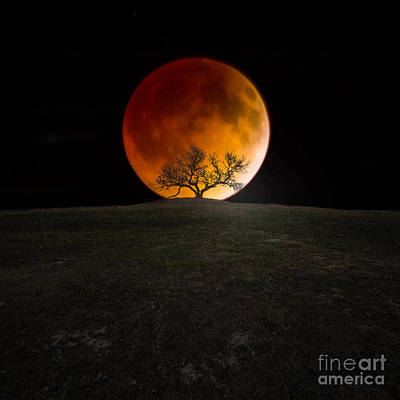 Eclipse Photograph - Blood Moon by Aaron J Groen
