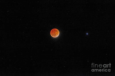 Print featuring the photograph Blood Moon And Stars by Martin Konopacki