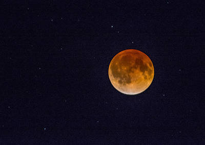 Photograph - Blood Moon And Stars by Shey Stitt
