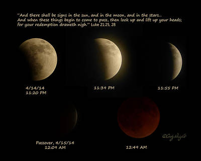 Photograph - Blood Moon Eclipse Of 4/15/2014 by Cindy Wright