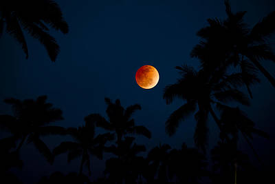 Blood Moon Photograph - Blood Moon In The Tropics by Sean Davey