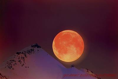 Photograph - Blood  Moon  by Jeanne  Bencich-Nations