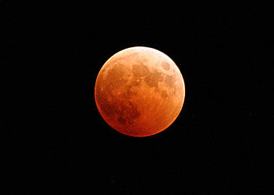 Solar Eclipse Photograph - Blood Moon Or Red Moon by Celestial Images